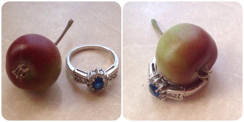 Crabapple with ring