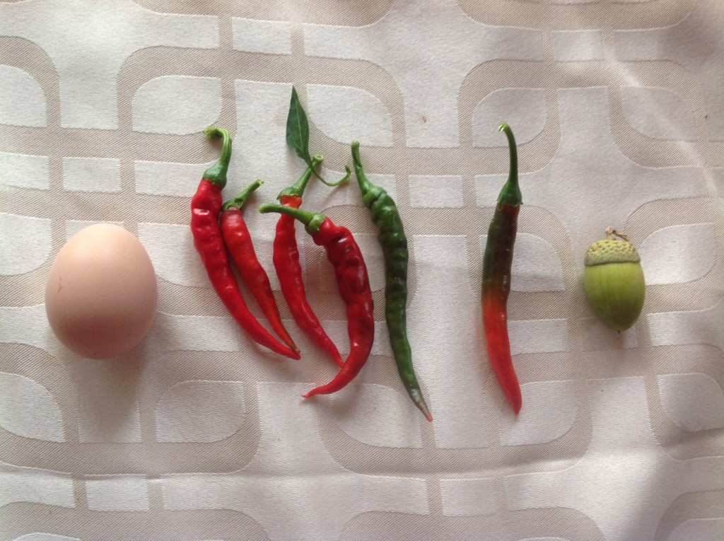 Chillies and egg 2