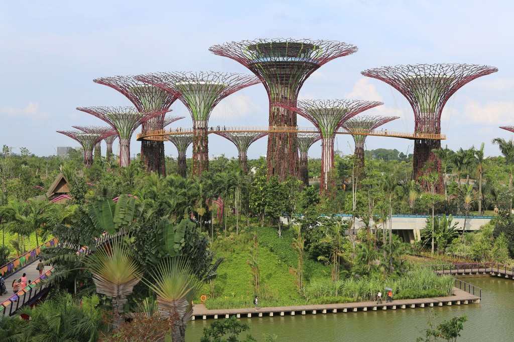 Singapore Supertrees Smuconlaw therainqueen.com